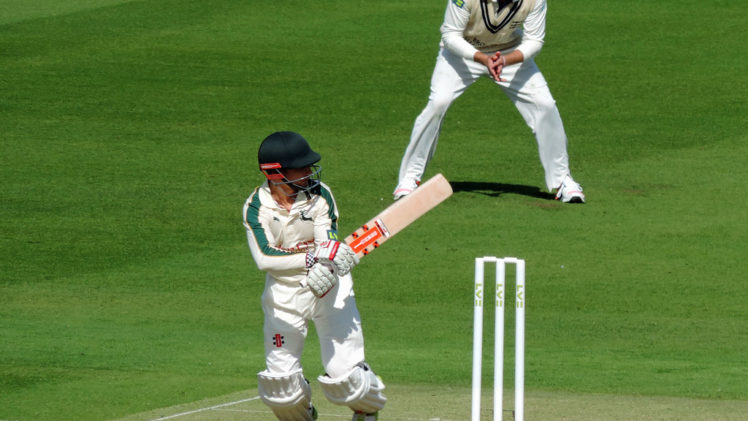 Cricket Playing