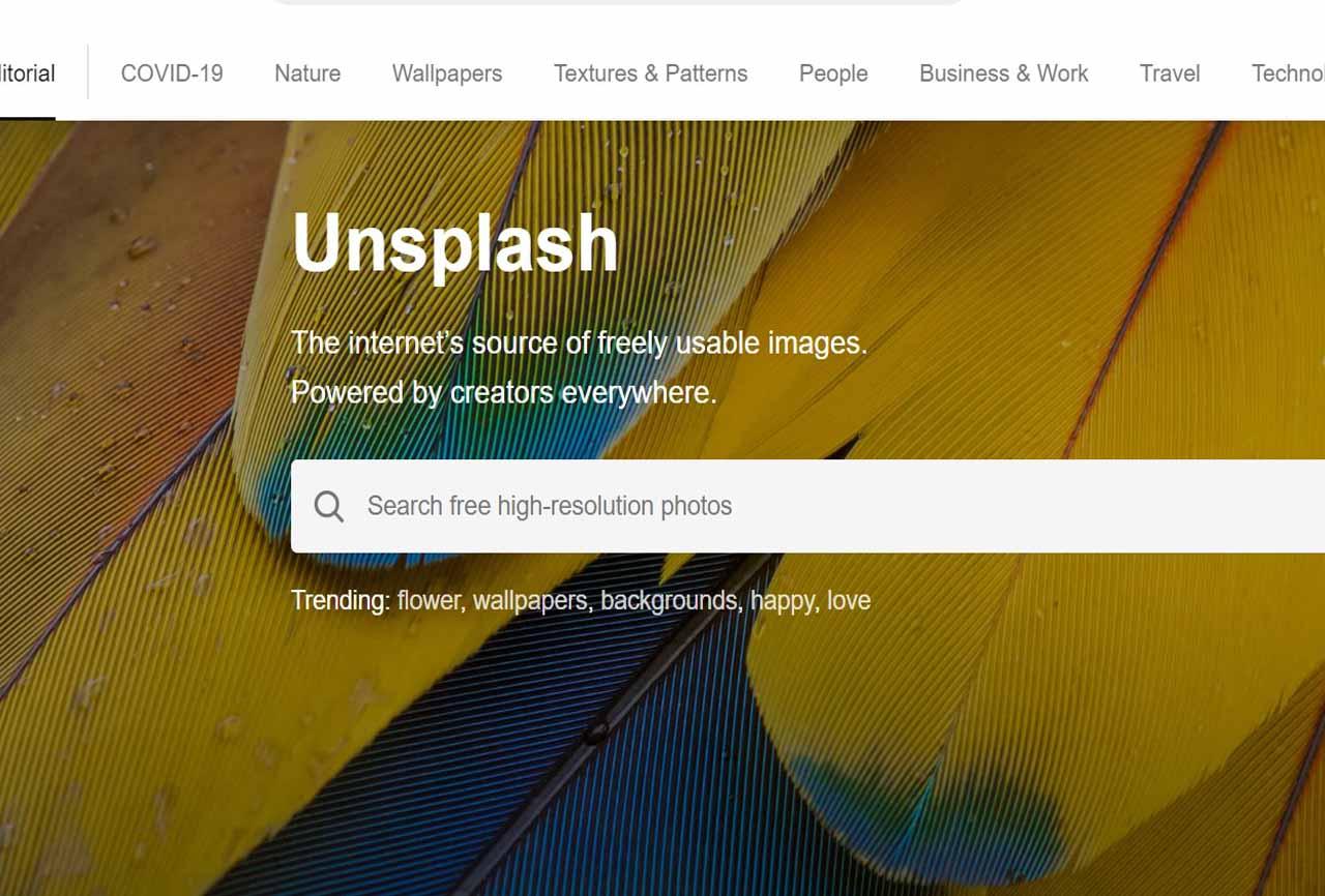 Unsplash Free Image