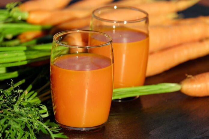 Suculenta de cenoura
